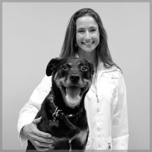 Dr. Shannon Williams - ACGLO